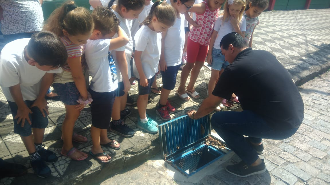 Bueiro ecológico em frente à escola Luiz Delfino