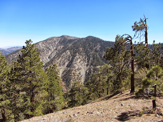 View southwest toward Mt. Baden-Powell and Mt Burnham from Mt. Lewis