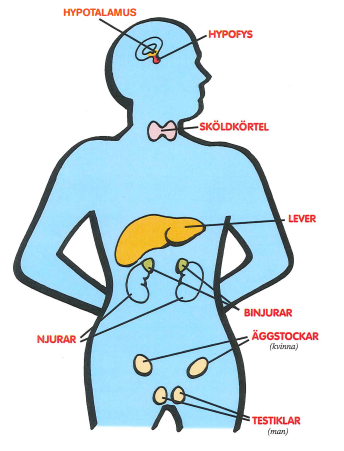lågt blodtryck sköldkörtel