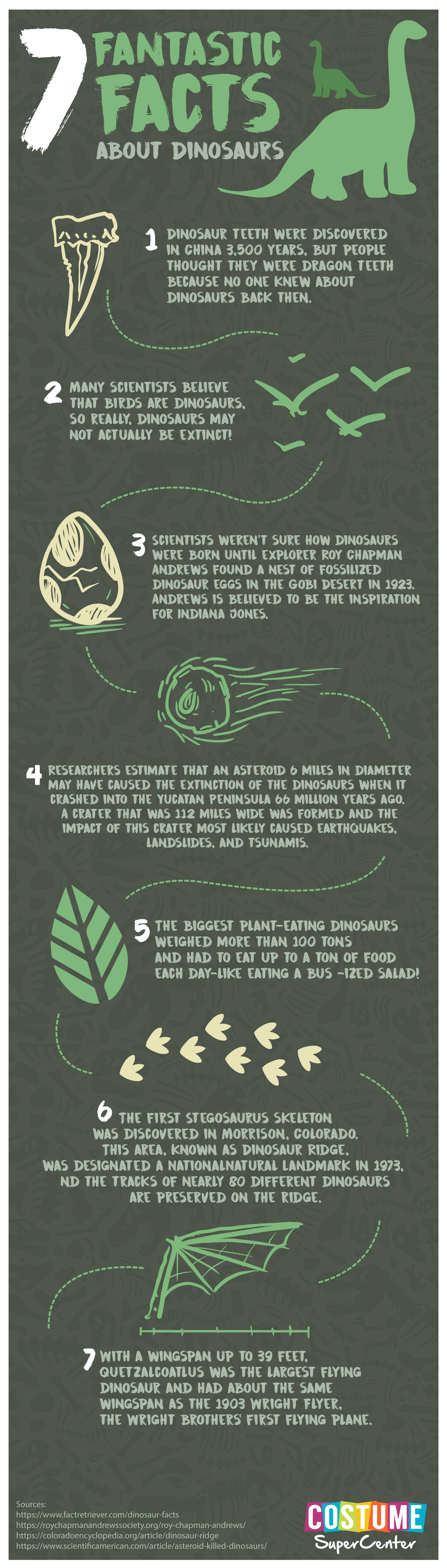 7 Fantastic Facts About Dinosaurs #infographic
