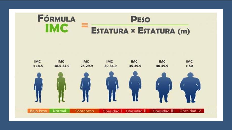 Que es la masa corporal imc