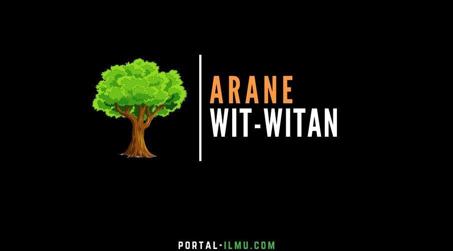 Arane Wit Witan Basa Jawa