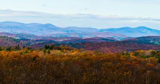 Mattatuck Trail Mohawk Mountain Section