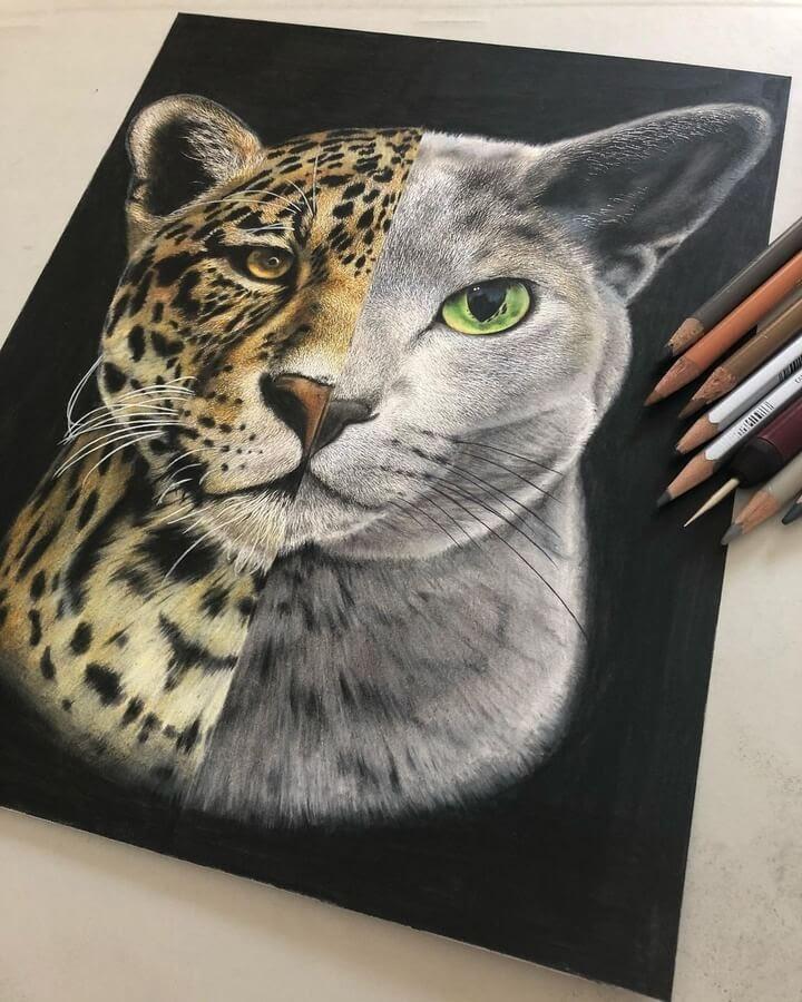 07-Leopard-cat-Haruki-Kudo-www-designstack-co