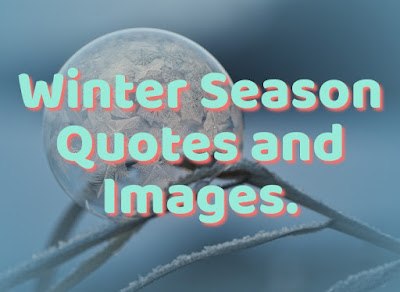 quotes for winter season
