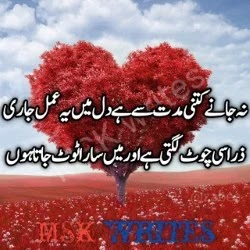 Dil Torna Poetry