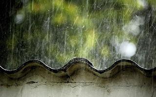 cau la pluja i la melangia m'atrapa - Pep Cassany