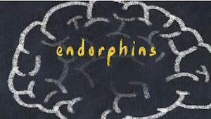 Endorfin: Kendalikan rasa sakit, tingkatkan daya tahan tubuh