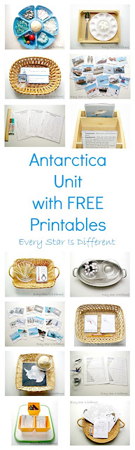 Antarctica Unit with Free Printables