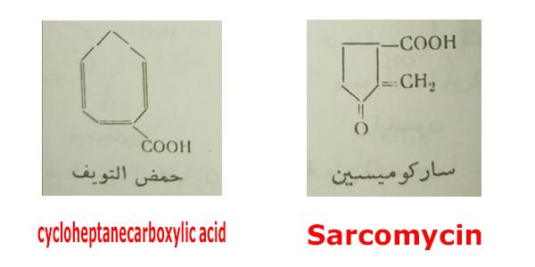 حلقي البنتان Cyclopentane و حلقي الهكسان Cyclohexane وحلقي الهبتان Cycloheptane