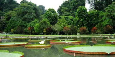 3 Tempat Wisata Bogor Paling Terkenal
