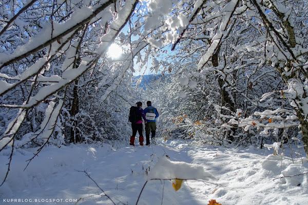 По первому снегу к озеру
