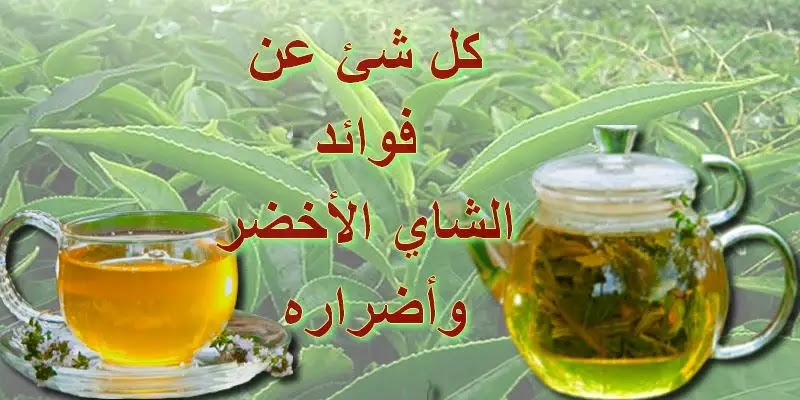 فوائد الشاي الأخضر,فوائد الشاي الاخضر,الشاي الاخضر,الشاي الأخضر,فوائد الشاي الاخضر للتنحيف,الشاي الأخضر للتنحيف,فوائد الشاي الاخضر للتخسيس,الشاي الأخضر للتخسيس,الشاي الأخضر على الريق,أهمية فوائد الشاي الأخضر,فوائد الشاي الأخضر ليبتون,الشاي,فوائد الشاي الأخضر للتخسيس,فوائد الشاي الأخضر والليمون,فوائد الشاي الأخضر على الريق,فوائد الشاي الأخضر بالنعناع