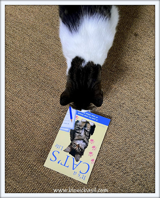 Book Reviews with Amber #166 ©BionicBasil® It's A Cat's Life, Melvyn's Purrsonal Copy