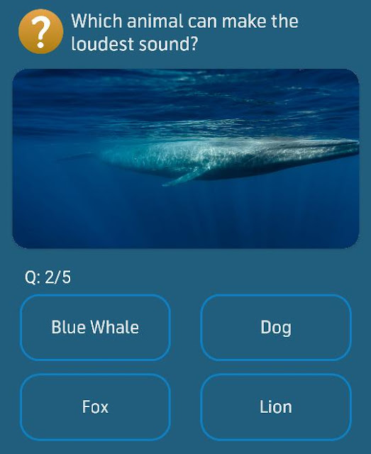 Which animal can make the loudest sound?