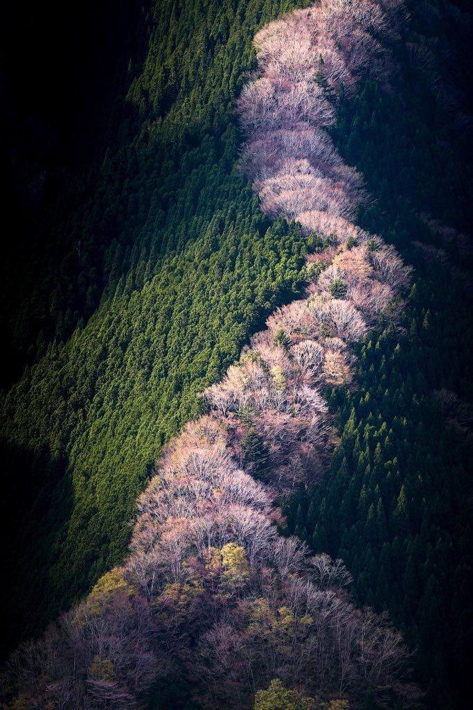 Natureza Maravilhosa