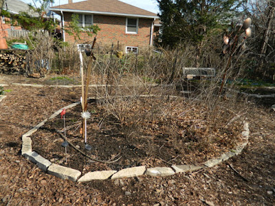 Etobicoke Toronto spring garden clean up before by Paul Jung Gardening Services
