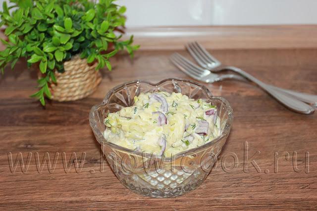 рецепт салата с сырым кабачком с пошаговыми фото