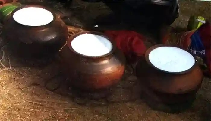 বকশীগঞ্জের ঐতিহ্যবাহী টক দই