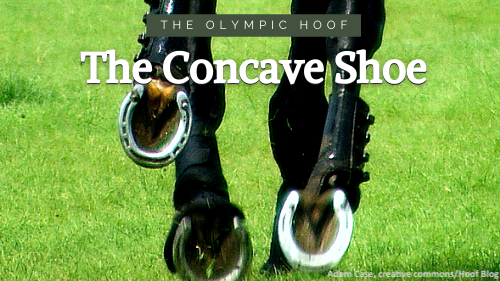 Concave horseshoes on eventer