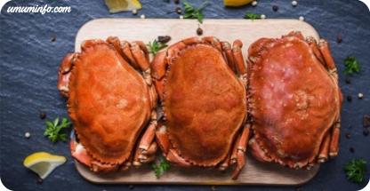 Manfaat konsumsi Daging Kepiting