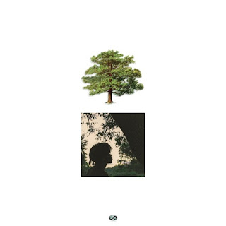 Trapo - Shade Trees (2016) - Album Download, Itunes Cover, Official Cover, Album CD Cover Art, Tracklist