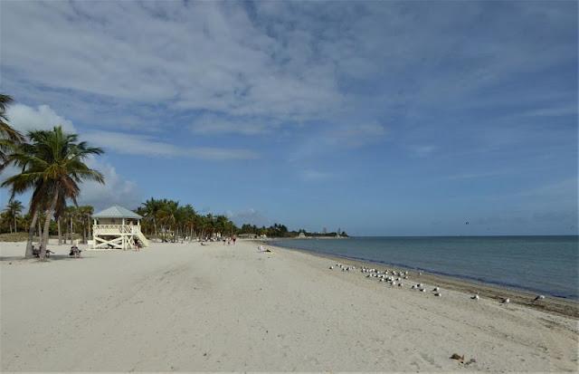 spiaggia quasi deserta  in florida