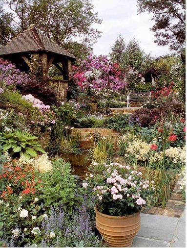Preston Bissett Nurseries And Country Shop: David Steven,s