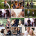 5 filmes românticos e lindos para assistir na Netflix