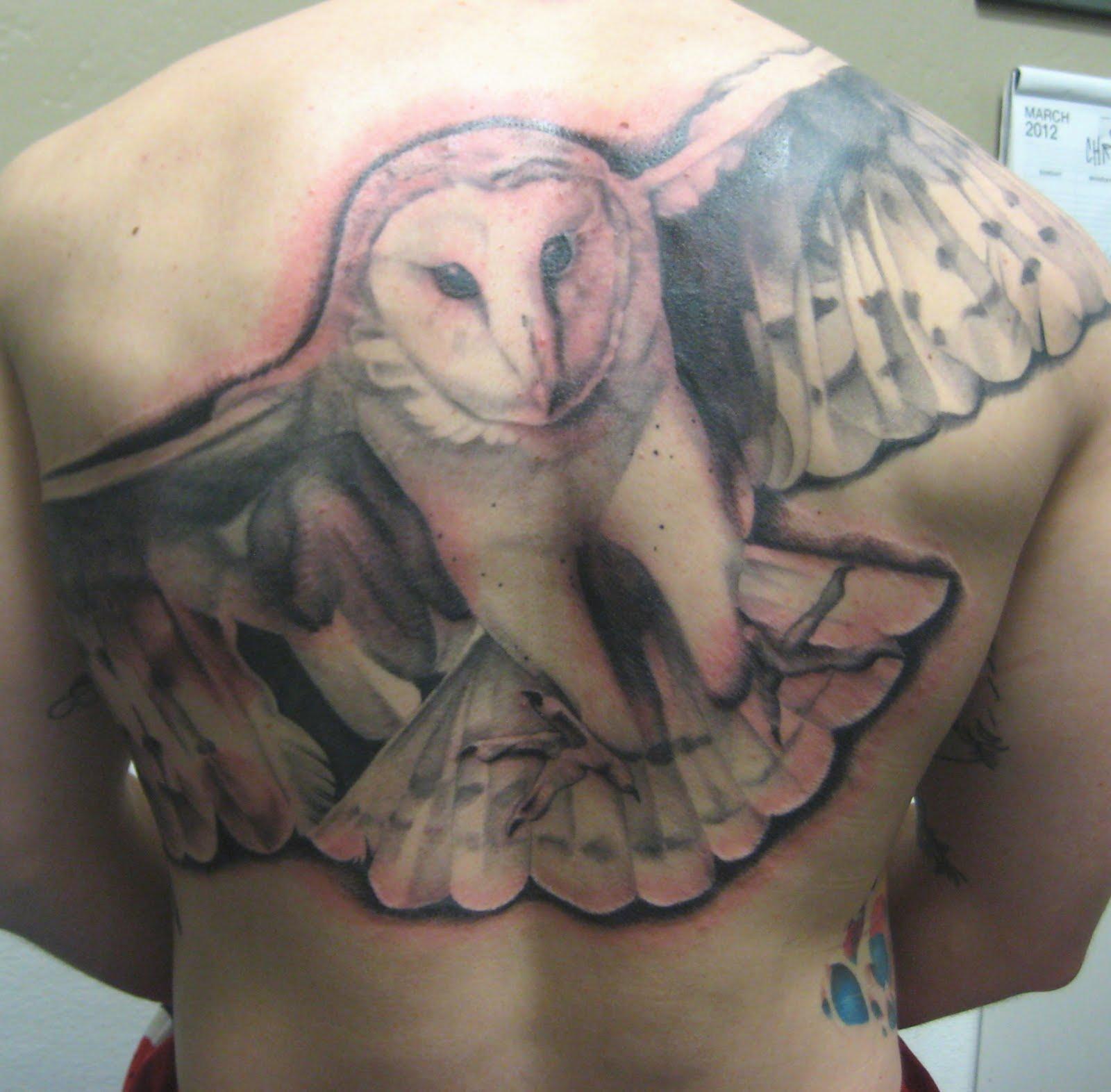 barn owl tattoo - HD1520×1415