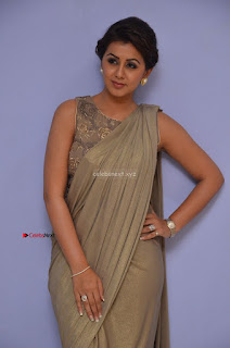 Nikki Galrani in Saree 104.JPG