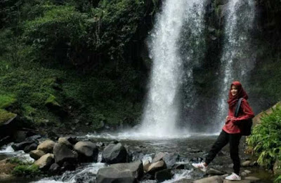 Tempat Wisata Keluarga Agrowisata Kebun Teh Pagilaran Batang