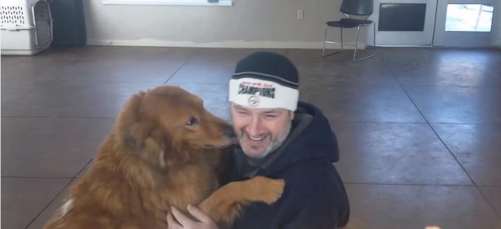 Cão perdido reencontra sua família