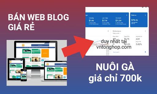 Mua bán website blog giá rẻ có sẵn, web bán hàng hoặc kiếm tiền adsense, giá chỉ 500k