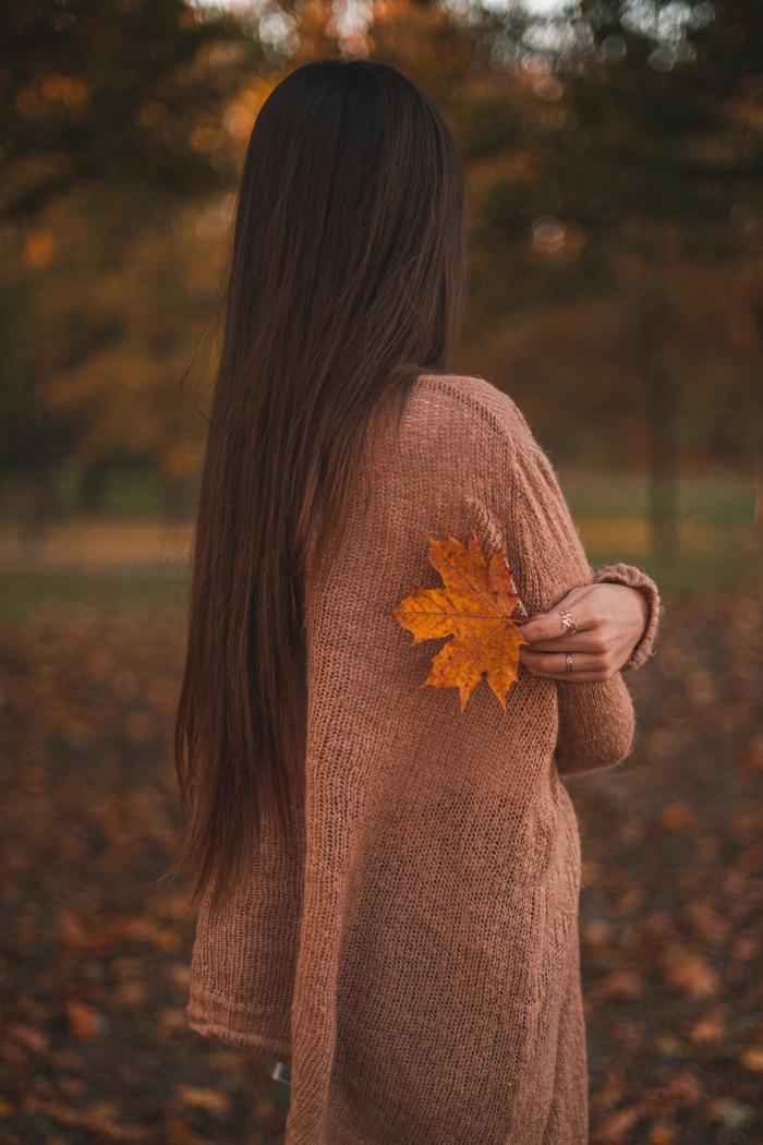 jesień w obiektywie