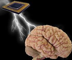 Scienceshil: Processing speed of the human brain compared to