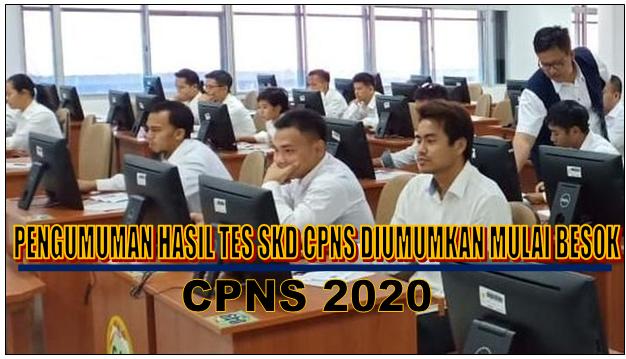 Catat, Pengumuman Hasil Tes SKD CPNS Diumumkan Mulai Besok