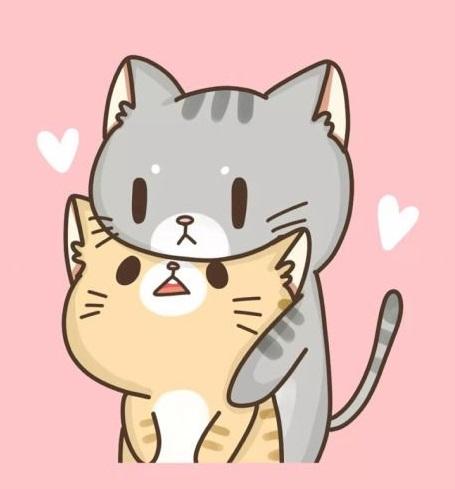 avatar mèo de thương