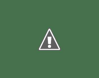 Fotografía de Argos con una usuaria en silla de ruedas