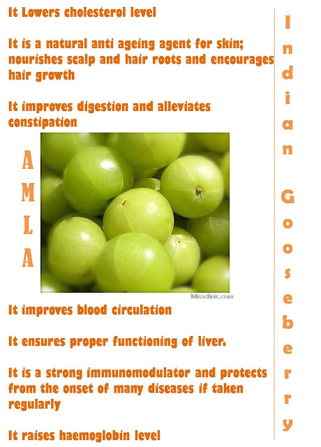If you like to use plants and herbs for healing purposes, you won't find many plants that will give you the numerous benefits that you get from the Indian Gooseberry plant. Let's take a look at some of the benefits of Indian Gooseberry, particularly for your skin and hair.
