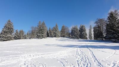Winterlandschaft Montagne de Romont