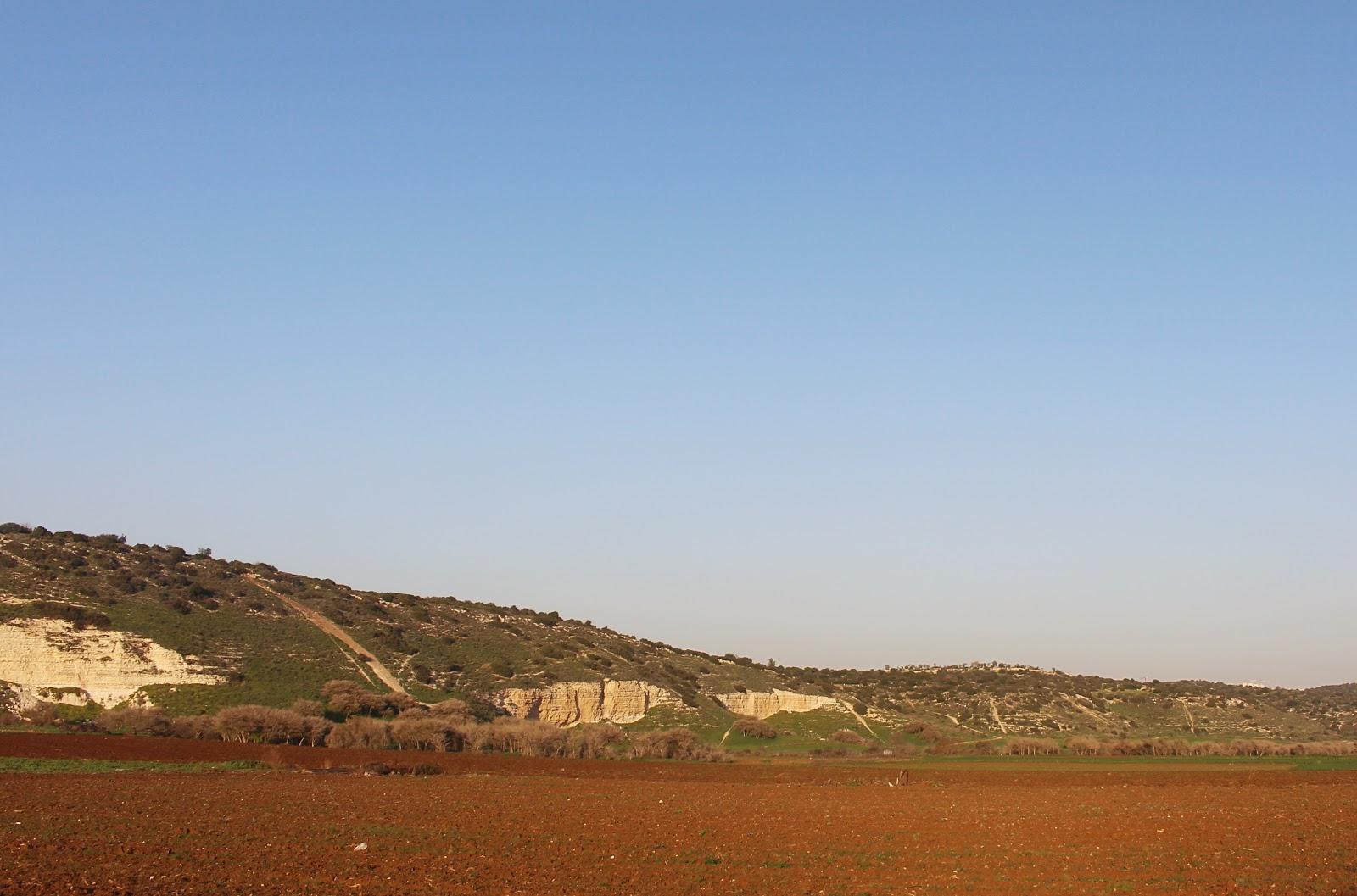 Israel Pilgrimage: Things To Do in Israel