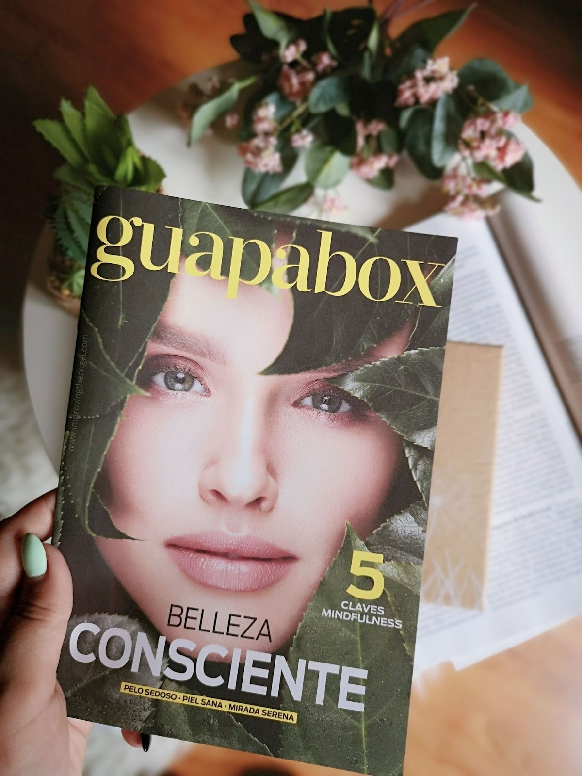 Guapabox Junio 2019