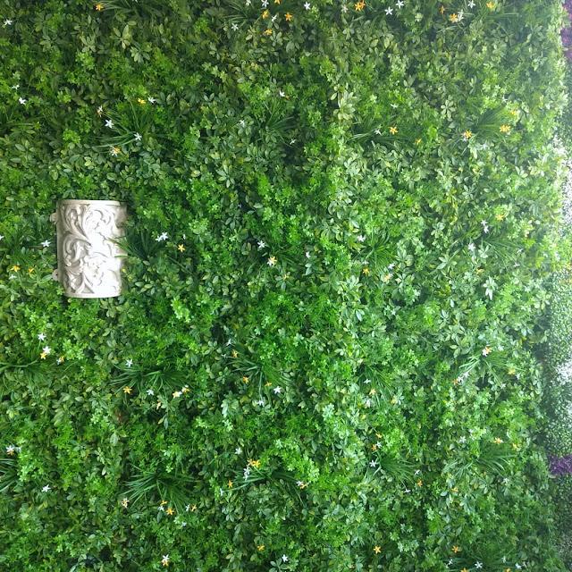 شركة تنظيف حدائق بجدة تنظيف حدائق الاستراحات بجدة