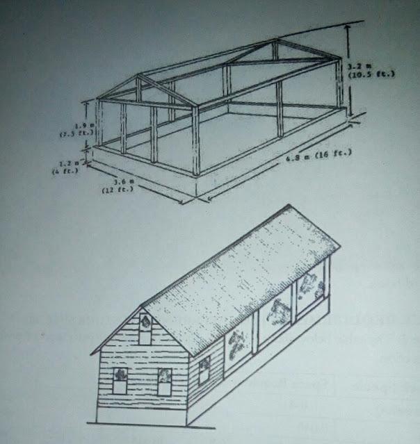 """alt = """"poultry house designs"""""""