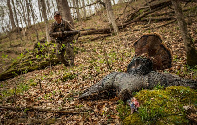 9 Things is Important To Do After Killing Turkey