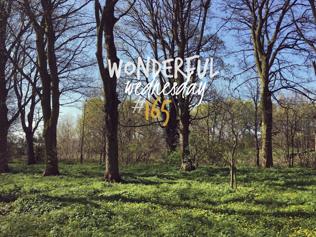 Wonderful Wednesday #165