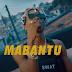 VIDEO | Mabantu – Mwenye Nyumba (Mp4) Download