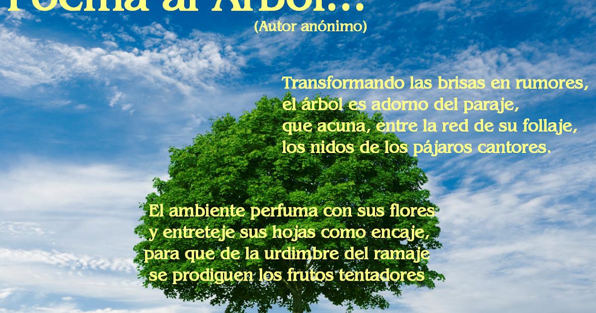 Más del PLANETA: Poema Al Árbol