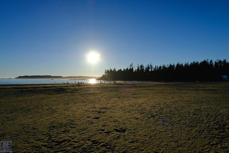 Le Chameau Bleu -  Mckenzie Beach Tofino Séjour sur l'ile de Vancouver
